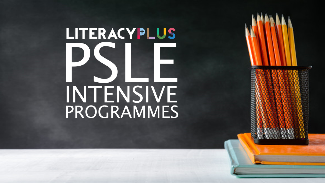 02_PSLE Intensive Programmes